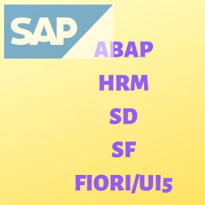 SAP ABAP HRM SD SF FIORI_UI5
